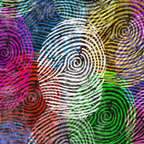 Multi-coloured fingerprints